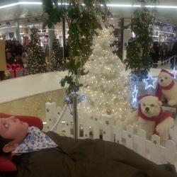 Alexis fasciné par les décorations de Noël