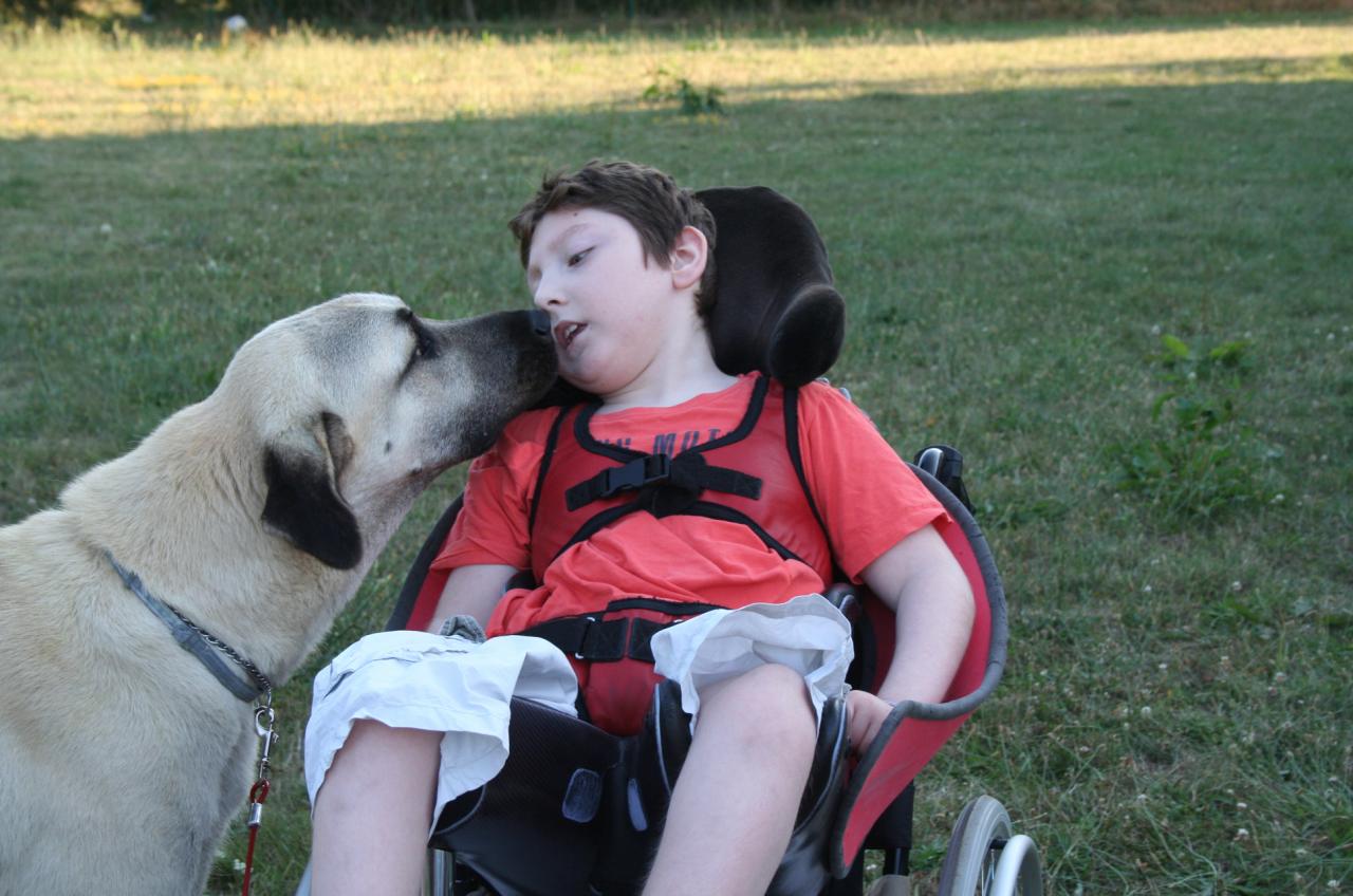 2012 Alexis et le chien de tata Valou